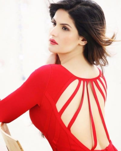 Zarine Khan hot photos