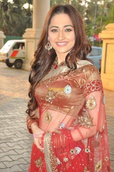 Ishq Ka Rang Safed actress Sanjeeda Sheikh in red saree pic