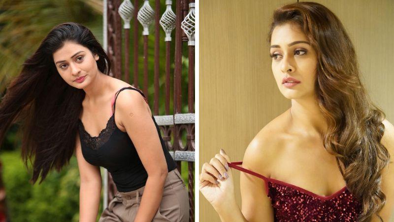 26 Sexiest Payal Rajput Photos Sexy Instagram Bikini Pics | RX 100 Actress